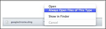 ica-file-always-open