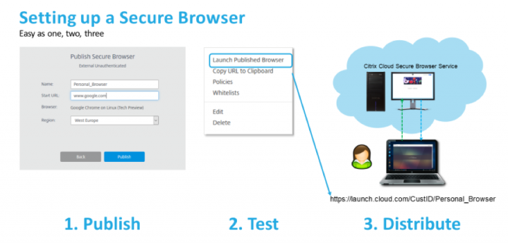 most secure browser for linux